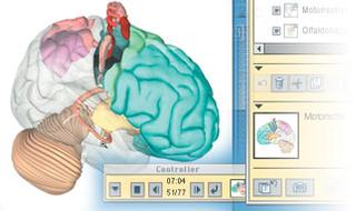Anatomical Software