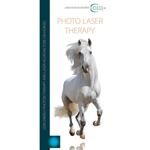 Flyer Laser Therapy Vet Horse LT, EN, 1018605, Acupuncture Books