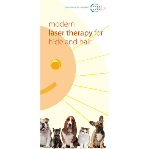 Flyer Laser Therapy and Laser Acupuncture Vet Small animals, EN, 1018607, Acupuncture accessories