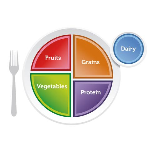 MyPlate Plate, 1018316 [W44791], Nutrition Education