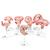Deluxe Pregnancy Models Series, 9 Individual Embryo & Fetus Models - 3B Smart Anatomy, 1018628 [L11], Pregnancy Models (Small)