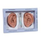 3B Ear set, one left and right ear,N15