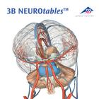 3B NEUROtables™ in English,S0190