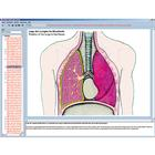 The human respiratory and circulatory systems, the human heart, Interactive CD-ROM,W13509