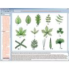 Botany in the Classroom, Interactive CD-ROM, 1004294 [W13525], Biology Software