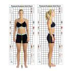 W41170: Postural Analysis Grid Chart The Original 3 x 7 ft.